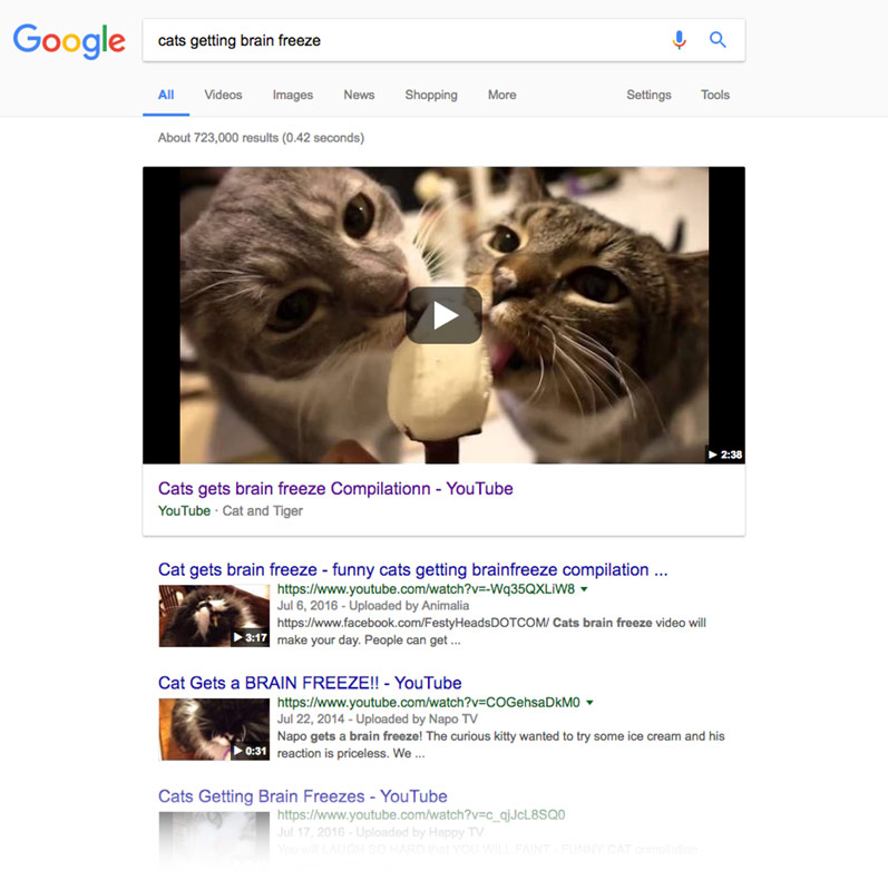 Google search: cats getting brain freeze
