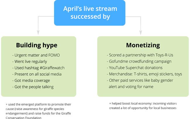 April the Giraffe Live Stream Success Diagram